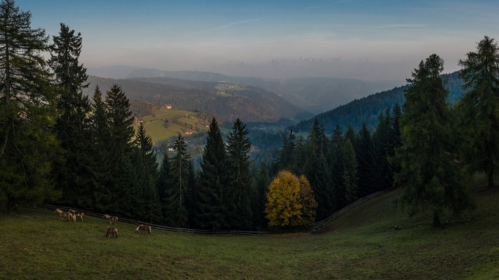 Untitled-Panorama1-2-4.jpg