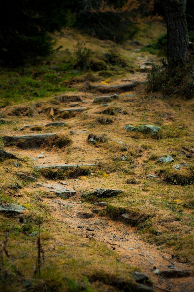 Path IX
